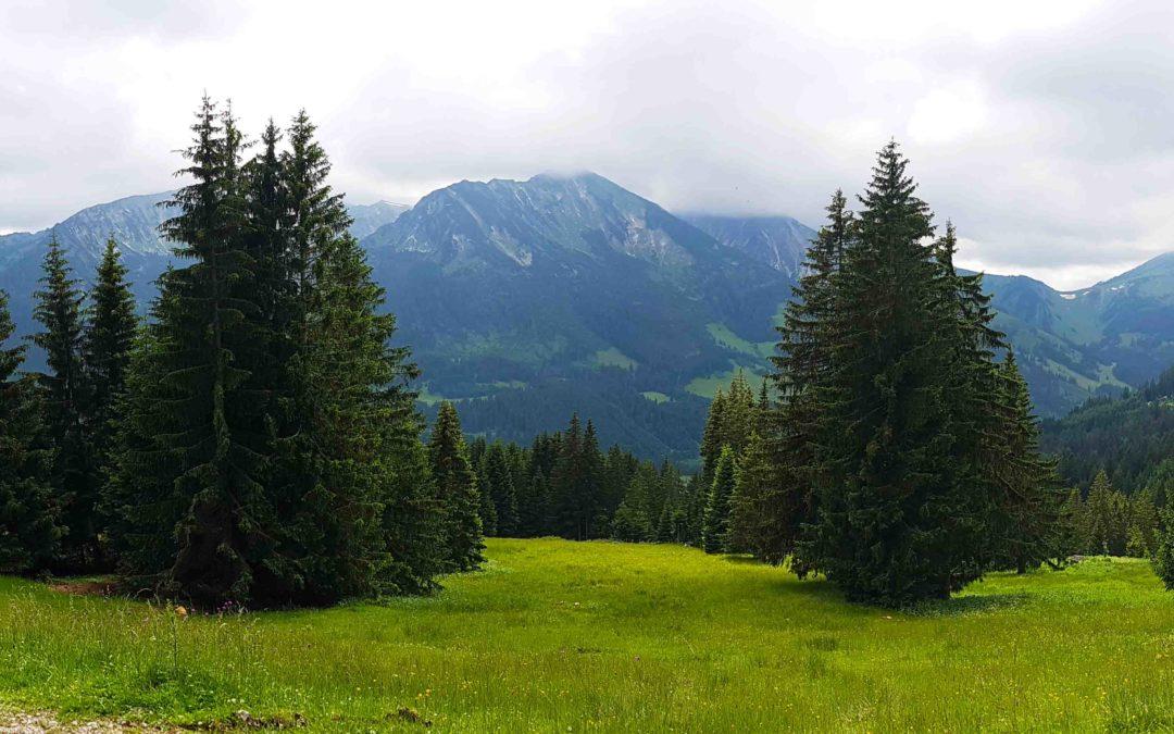 Magie in de bergen